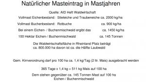 Mast-Kirrung
